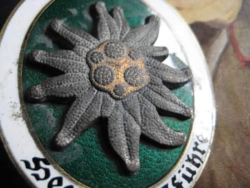 Bergfuhrer Mountain Badge--opinions...
