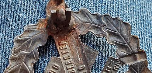bronze SA-Sportabzeichen by W. Redo