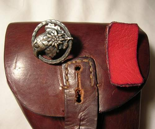 Identify this badge/emblem on holster?
