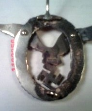 Luftwaffe Badge and Clasp?