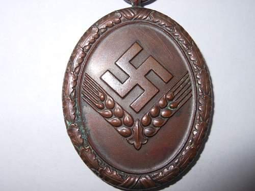 Click image for larger version.  Name:RAD Medal 003.JPG Views:203 Size:224.0 KB ID:296113