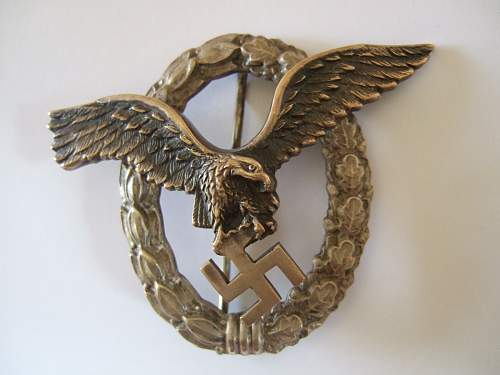 Click image for larger version.  Name:2012_0310BSWPilotBadge0002.jpg Views:77 Size:108.2 KB ID:317906