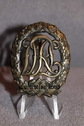 Click image for larger version.  Name:drl brons.jpg Views:30 Size:91.4 KB ID:418057