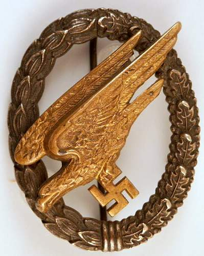 Destroyer & Paratrooper Badges.