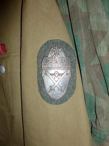 DEMJANSK shield : fake, please confirm or not...