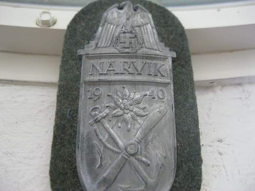 How does this Narvik shield look?