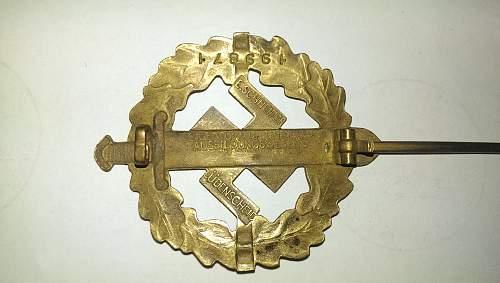 SA-Sportabzeichen - Gold or Bronze?