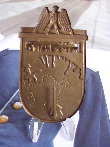 Lapland shield. Does it look real?