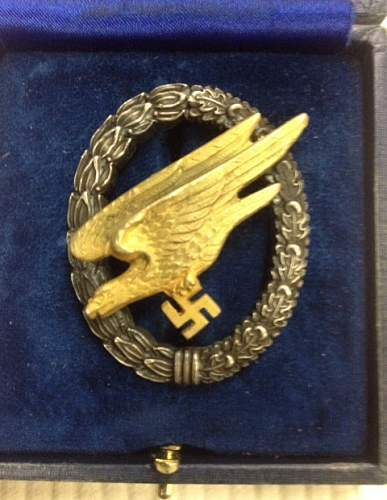 Paratrooper Badge with case