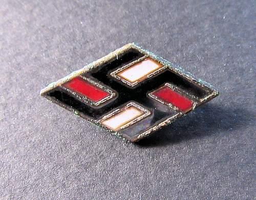 NS Studentbund pin