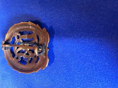 DRL Sportabzeichen in Bronze