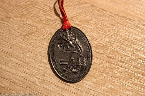Unnown artilery medal, probably regimental item