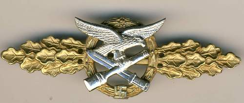 air force badge