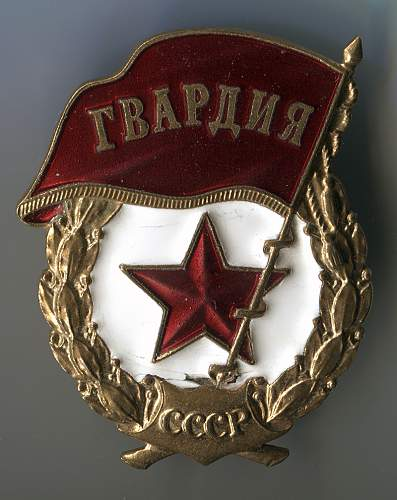 Guard's Badge