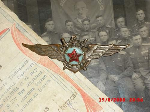 Aeronaval badge