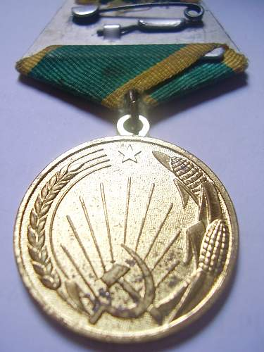 Medal for Development of Virgin Lands c/w papers