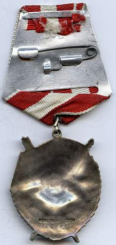 Red Banner to sapper company commander