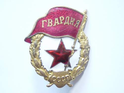 Click image for larger version.  Name:Guards badge.jpg Views:154 Size:139.1 KB ID:27228