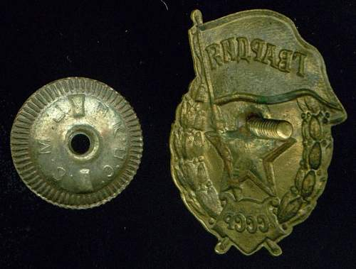 Click image for larger version.  Name:Guard's Badge reverse.jpg Views:259 Size:85.9 KB ID:28309