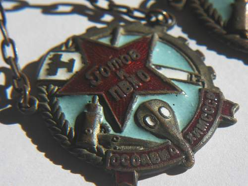 Click image for larger version.  Name:soviet gas badge 004.jpg Views:98 Size:232.5 KB ID:348620