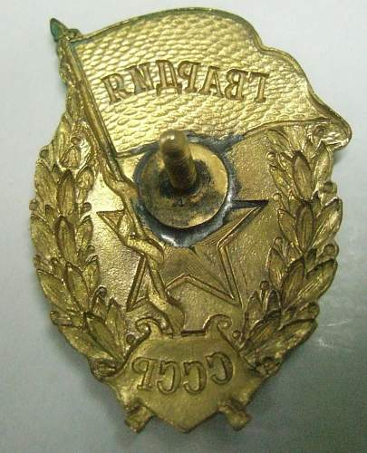 Estonian Guards Badge