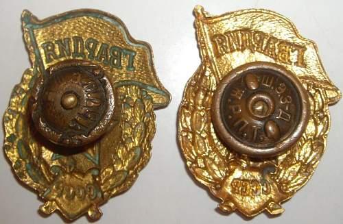 WW2 Gavardiya Badge Questions