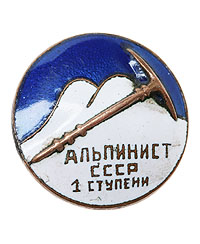 Badge - insignia unknown ??