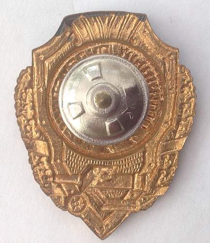 Click image for larger version.  Name:Excellent Machine Gunners badge reverse.jpg Views:40 Size:218.7 KB ID:599811