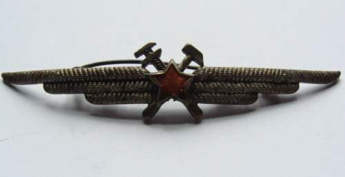 Interesting Russian bomber (?) badge?