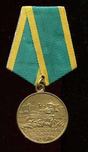 Click image for larger version.  Name:Nikolai Nikolaevich Bogdanov, obverse.jpg Views:33 Size:309.8 KB ID:728062