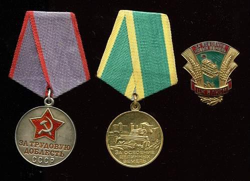 Click image for larger version.  Name:Aleksandr Mikhailovich Popkov medals.jpg Views:10 Size:333.7 KB ID:813348