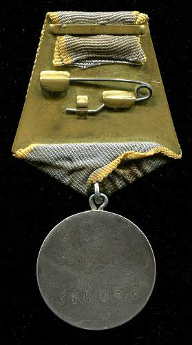 For Combat Service, #316086, Motorman, Torpedo Cutter #46, 2nd Torpedo Cutter Brigade