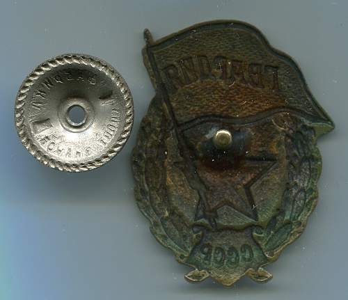 Click image for larger version.  Name:Guard's Badge 9, reverse.jpg Views:36 Size:223.4 KB ID:95906