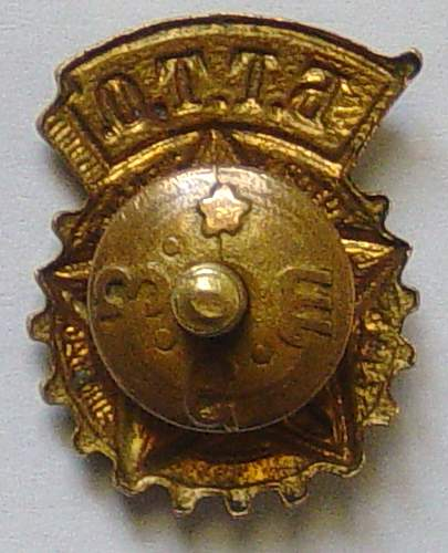 Ready for Labour and Defence of the USSR Sports badge