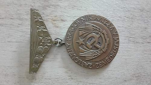Is this a Soviet era medal?