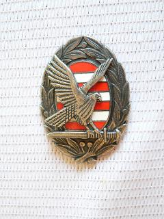 Please help me identify two badges