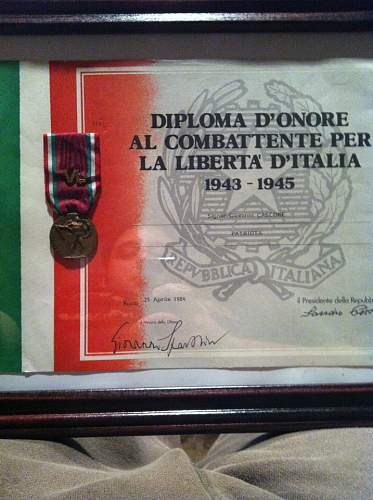 Italian Partisain Medal