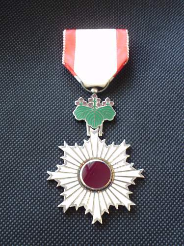 Unknown medal???