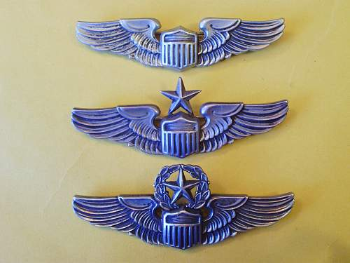 WW2 Army Air Corps aerial gunner wing?