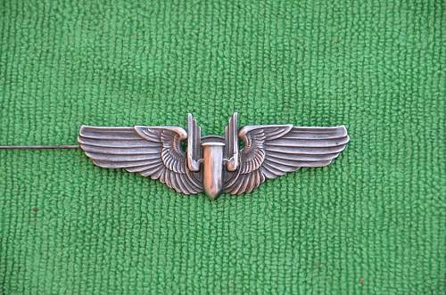 Click image for larger version.  Name:wings 021.jpg Views:106 Size:165.2 KB ID:403318