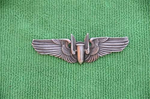 Pic's of my Aerial Gunner Wings