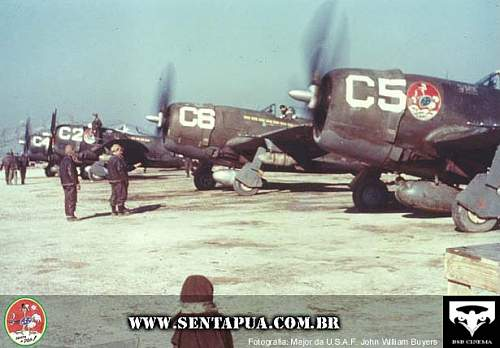 Click image for larger version.  Name:P-47 D28RE - 03a San Giusto Pisa.jpg Views:641 Size:45.8 KB ID:46158