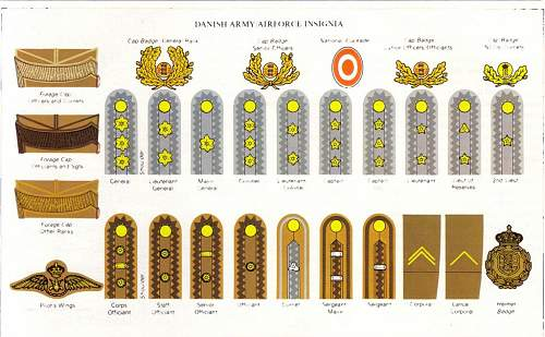 Click image for larger version.  Name:Dan army insignia.jpg Views:1257 Size:112.0 KB ID:506560