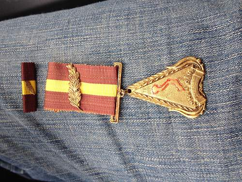 Unknown medal. Anyone know what it is for?