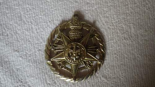 Strange large medal that I picked up. Need help to identify