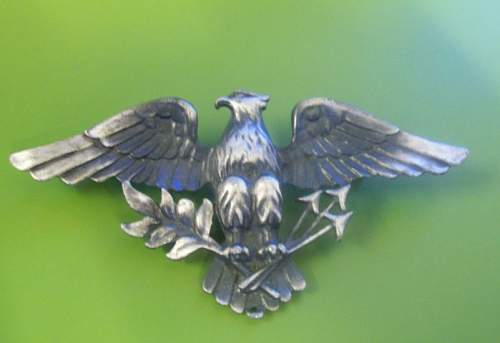US Colonel Insignia from the Spanish American War ?