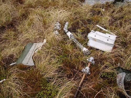 Click image for larger version.  Name:Falklands 3.12.10 038.jpg Views:707 Size:282.1 KB ID:235900