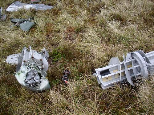 Click image for larger version.  Name:Falklands 3.12.10 036.jpg Views:557 Size:279.0 KB ID:235902