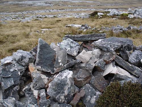 Click image for larger version.  Name:Falklands 3.12.10 043.jpg Views:1092 Size:270.2 KB ID:236072