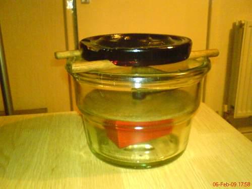Glassmine 43